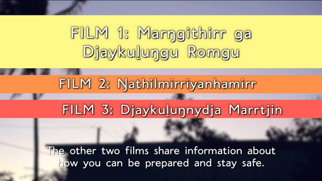 Three Cyclone Preparedness films have been produced in language